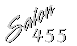 Salon 455 Logo